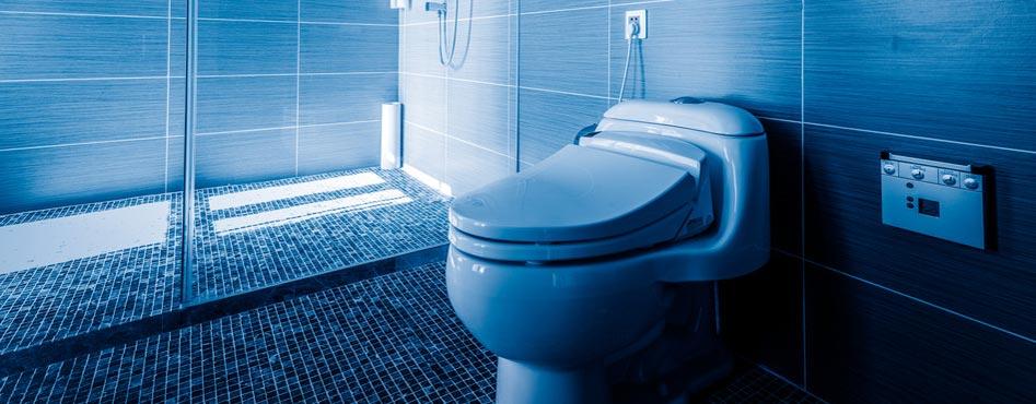Réparation de Toilettes au Luxembourg